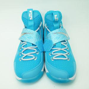 Nike LeBron 14 HWC GS Rick Flare Nature Boy